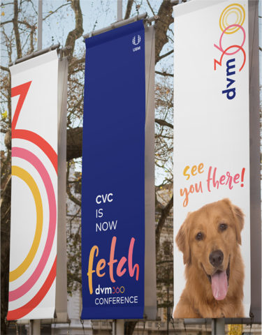 fetch dvm360 Banners