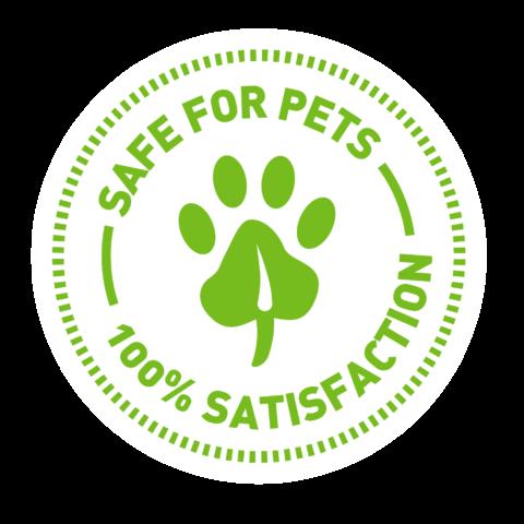 Petlinks Stamp - Pet Care Branding