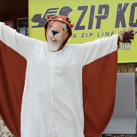 ZIP KC - Zippy The Squirrel - Recreation Brand Identity