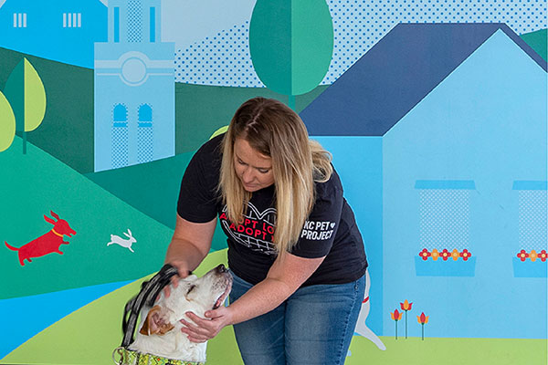 KC Pet Project Featured Image