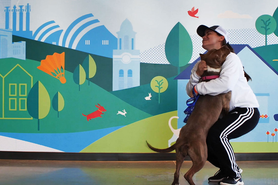 KC Pet Project - Wall Graphics